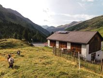 Typische mening in de Alpen royalty-vrije stock afbeelding