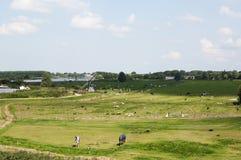 Typische niederländische Landschaft Stockfoto