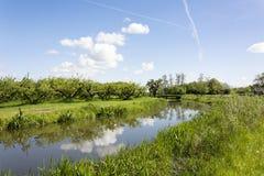 Typische niederländische Landschaft im Betuwe, nahe dem Fluss Linge, an einem schönen Tag in den Niederlanden Lizenzfreies Stockbild