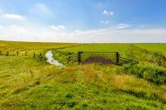 Typische niederländische Polderlandschaft in der Sommersaison Stockfotografie