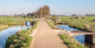 Typische niederländische Polderlandschaft im Herbst Lizenzfreie Stockbilder