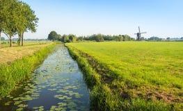 Typische niederländische Polderlandschaft mit einer alten Windmühle Stockfoto