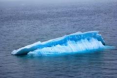 Typische Prüfspule (kleiner flacher Eisberg) im Wasser des Barents-Meeres Stockfoto