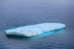 Typische Prüfspule (kleiner flacher Eisberg) im Wasser des Barents Se Stockfotografie