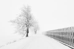 Typische schneebedeckte Landschaft in den Erz-Bergen, Tschechische Republik Lizenzfreies Stockfoto