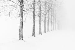 Typische schneebedeckte Landschaft in den Erz-Bergen, Tschechische Republik Lizenzfreie Stockbilder