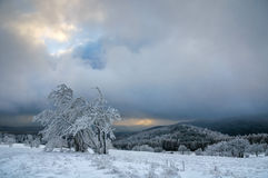 Typische schneebedeckte Landschaft in den Erz-Bergen, Tschechische Republik Stockfoto