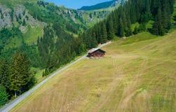 Typische Schweizer Chalets, alpine Bäume des Waldes und schräge Wiesen schließen das Bild ab stockbild