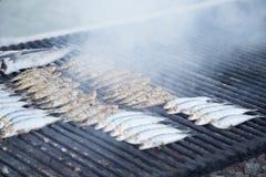 Typische spanische, gegrillte Sardinen kochten in einem Grillfeuer lizenzfreie stockfotos