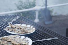 Typische spanische, gegrillte Sardinen kochten in einem Grillfeuer stockbild
