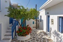 Typische Straße und Blumen in der Stadt von Parakia, Paros-Insel, Griechenland stockbild