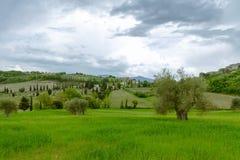 Typische Toscaanse meningen Royalty-vrije Stock Foto