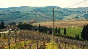 Typische toskanische Landschaft mit den schönen grünen Hügeln 16 stock video