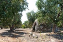 Typische trullobouw op het plattelandsgebied van Apulia stock fotografie