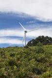 Typische Windmühle oder Aerogenerator der äolischen Energie Lizenzfreie Stockbilder