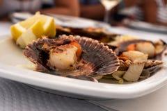 Typischer asturischer Teller von zamburiñas lizenzfreie stockfotos