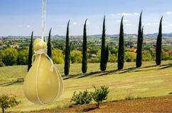 Typischer italienischer Käse Caciocavallo gegen den Hintergrund der charakteristischen italienischen Landschaft stockfotografie