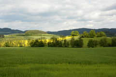 Typischer ländlicher böhmischer Forest Landscape, Tschechische Republik, Europa Stockfotos