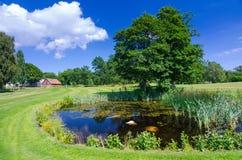 Typischer schwedischer Wasserteich auf dem Golfplatz Stockbilder