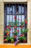 Typisches andalusisches Fenster mit Stangen und Lehmblumentöpfen stockfotos
