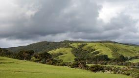 Typisches Hinterland große Ozean-Straße, Australien Stockbild