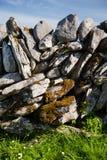 Typisches irisches Steinzaundetail, grünes grasartiges Feld Stockbild