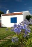 typisk algarve hus Arkivbild