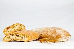 Typisk bröd för italienare royaltyfri bild