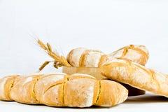 Typisk bröd för italienare royaltyfri foto