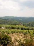 Typisk Chiantilandskap, Tuscany, Italien Fotografering för Bildbyråer