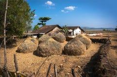 Typisk hayloft i Indien Höstack och hus för bonde` s Livet av det fattiga folket i byar royaltyfri bild