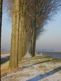 Typisk holländsk vinter i det lantliga landskapet Flevoland arkivbilder