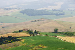 Typisk italienskt landskap i Tuscany Royaltyfria Foton