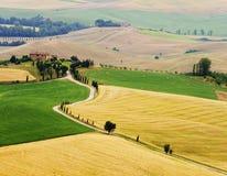 Typisk italienskt landskap i Tuscany Arkivfoto