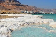Typisk landskap av det döda havet, Israel Royaltyfri Fotografi