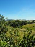 Typisk landskap av Montsen du Lyonnais, ovanför den Brévenne dalen, söder av Lyon arkivfoto