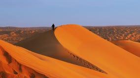 Typisk landskap av Sahara Desert tidigt på morgonen lager videofilmer