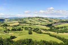 Typisk landskap Marche Arkivfoto