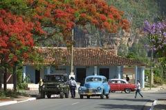 Typisk lantlig plats för Vinales Kuba Royaltyfri Fotografi