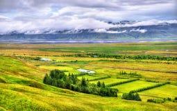 Typisk lantligt landskap av sydliga Island Fotografering för Bildbyråer