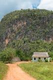 Typisk lantligt trähus på den Vinales dalen Fotografering för Bildbyråer