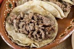Typisk mexicansk kokkonst royaltyfria foton