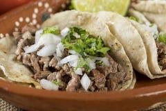 Typisk mexicansk kokkonst fotografering för bildbyråer