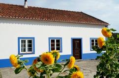 Typisk portugisiskt hus Arkivbilder