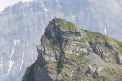 Typisk sikt av de schweiziska fjällängarna Arkivbilder