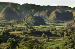 Typisk sikt av Valle de Vinales med mogotes i Kuba Arkivbild
