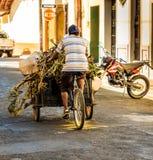 Typisk sikt i leon Nicaragua royaltyfria foton