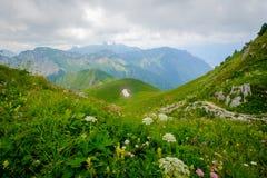Typisk sommarbergSchweiz landskap arkivfoton
