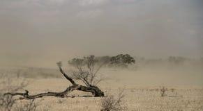 Typisk sommarstormby, Kgalagadi Transfrontier nationalpark, Sydafrika Arkivbild
