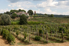 Typisk Tuscan arbetelantgård Royaltyfria Bilder